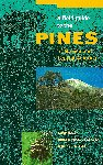 A FIELD GUIDE TO THE PINES OF MEXICO AND CENTRAL AMERICA