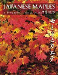 JAPANESE MAPLES. J.D. Vertrees. (2001) Timber Press